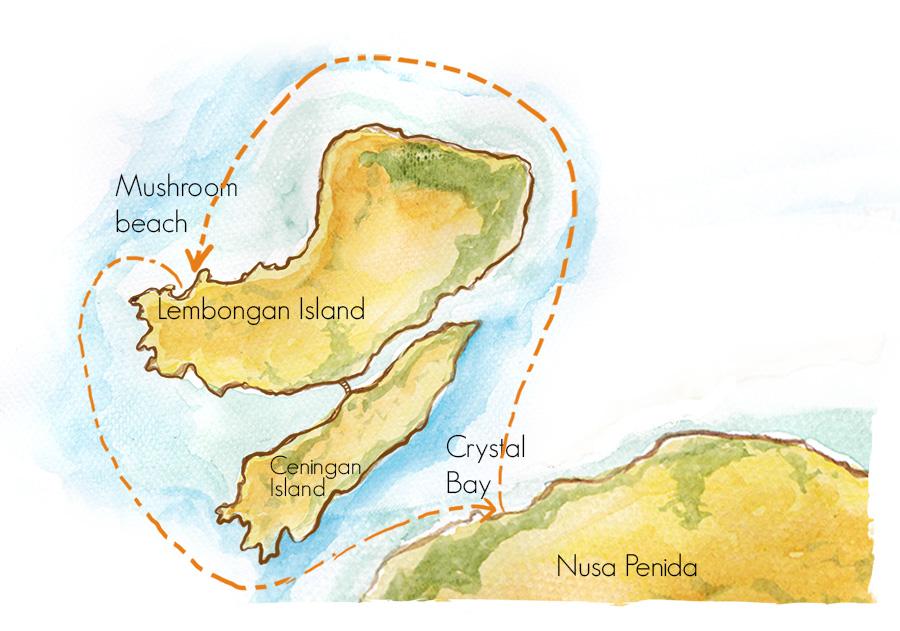 Aristocat - Bali Hai Cruises