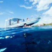 Blue Corner Dive, Nusa Ceningan, Ceningan, The Lembongan Traveller, Nusa Lembongan accommodation, Nusa Lembongan Villas, Nusa Lembongan Resorts, Nusa Lembongan hotels, Sandy Bay Villas, Sandy Bay