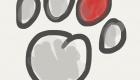 Paws of Lembongan, Nusa Lembongan Villas, Lembongan Hotels, Lembongan Resorts, Lembongan Bungalows, Lembongan Villas, The Lembongan Traveller, Nusa Lembongan Hotels, Nusa Lembongan Resorts, Nusa Lembongan Bungalows, Nusa Lembongan Villas,